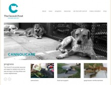 the cannoli fund website